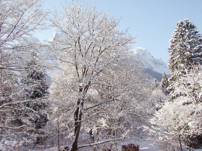 Schnee, wohin das Auge blickt...
