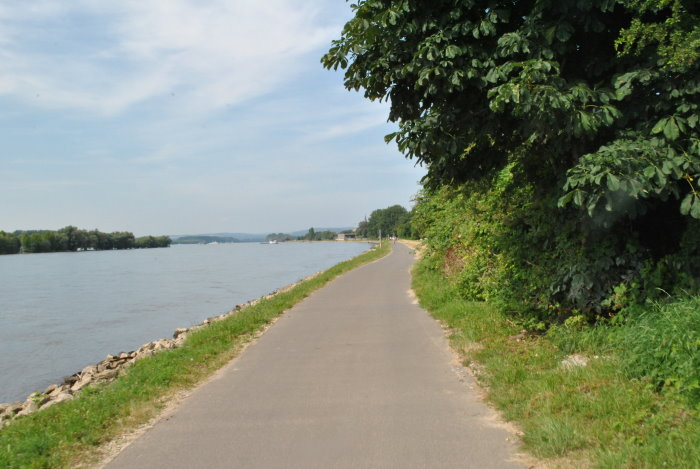 Radweg nach Rüdesheim